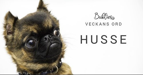 Veckans ord - Husse